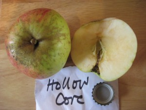Hollow Core